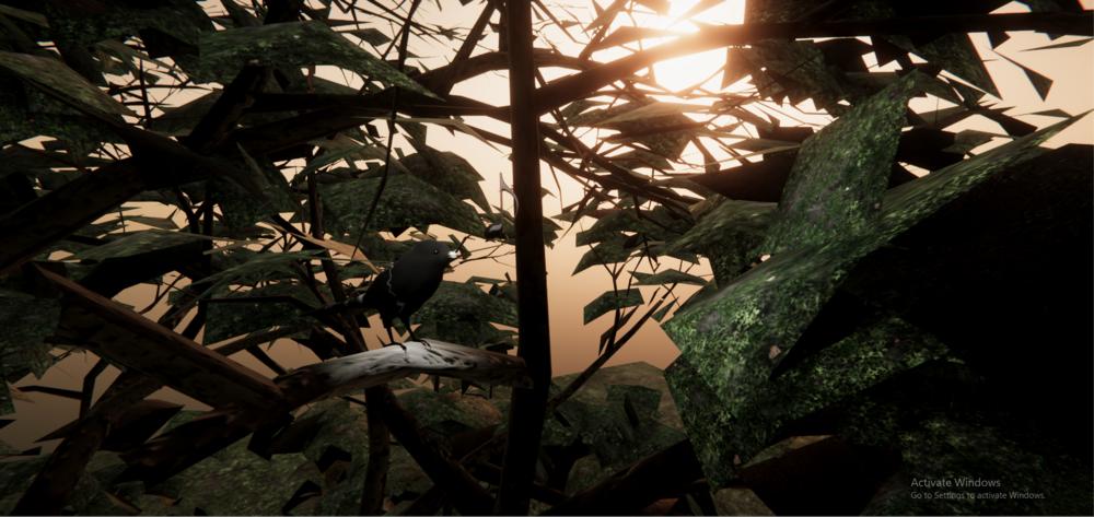 capture_bird.PNG