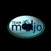 Team Modjo